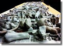 Bones-Display